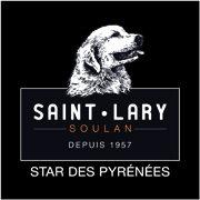 Saint Lary logo